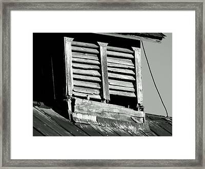 Small Peep Framed Print