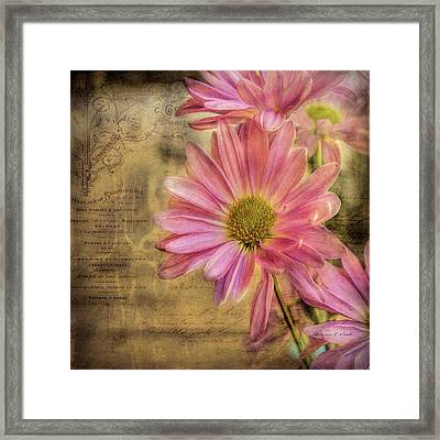 Framed Print featuring the photograph Small Perfections by Bellesouth Studio