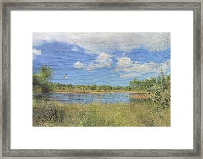 Small Pond With Weathered Wood Framed Print by Rosalie Scanlon