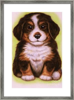 Small Puppy 20 Framed Print