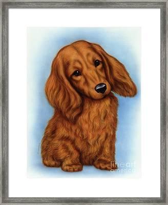 Small Puppy 5 Framed Print