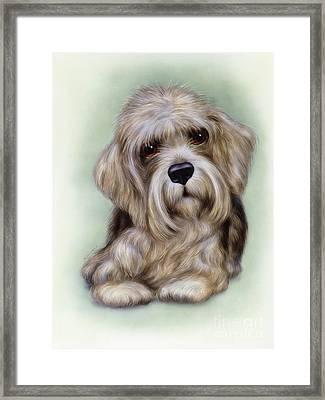 Small Puppy 8 Framed Print