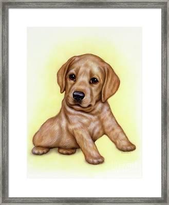 Small Puppy 9 Framed Print
