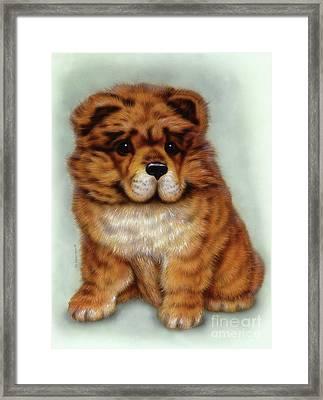Small Puppy1 Framed Print