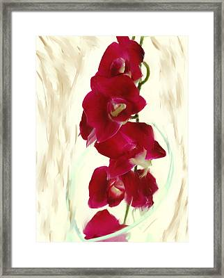 Small Red Lilies Framed Print by Daniel D Miller