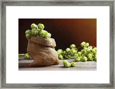 Small Sack Of Hops Framed Print by Amanda Elwell