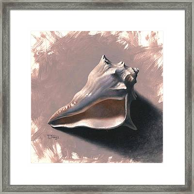Small Seashell Framed Print by Timothy Jones