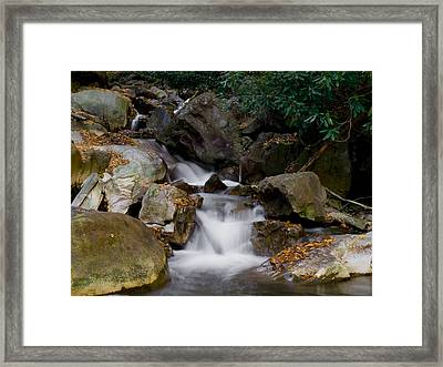 Small Stream Framed Print by Bob Hahn