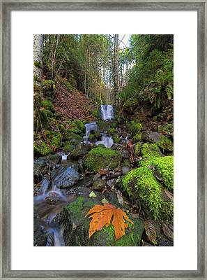 Small Waterfall At Lower Lewis River Falls Framed Print by David Gn