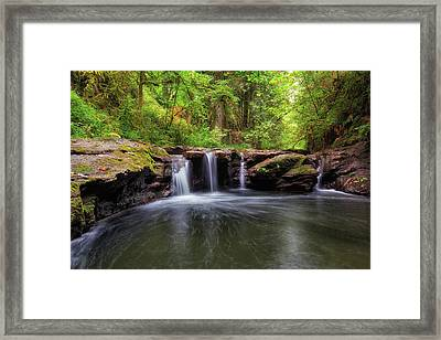 Small Waterfall At Rock Creek Framed Print by David Gn