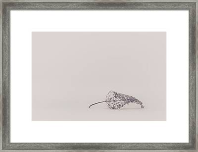 Smallest Leaf Framed Print by Scott Norris