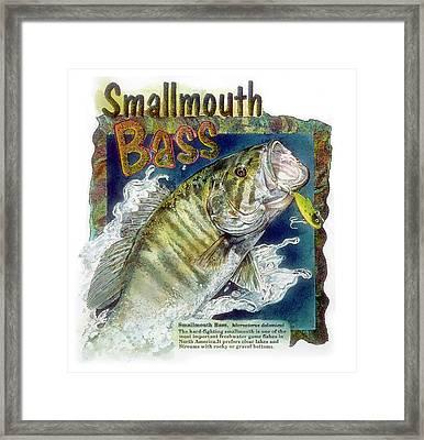 Smallmouth Bass Framed Print