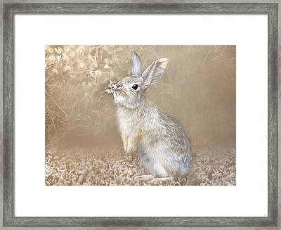 Framed Print featuring the photograph Smell Test by Donna Kennedy