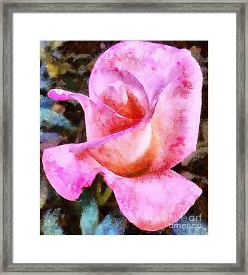 Smell The Roses Framed Print by Krissy Katsimbras