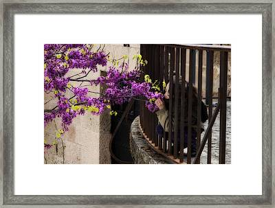 Smelling The Flowers Framed Print by Obi Martinez
