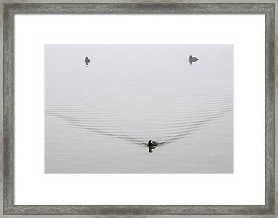 Framed Print featuring the photograph Smile by Carolyn Dalessandro