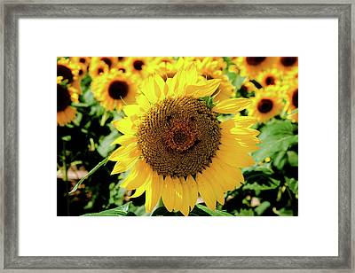 Framed Print featuring the photograph Smile by Greg Fortier