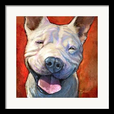 Smiling Dog Framed Prints