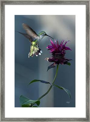 Smiles In The Garden Framed Print
