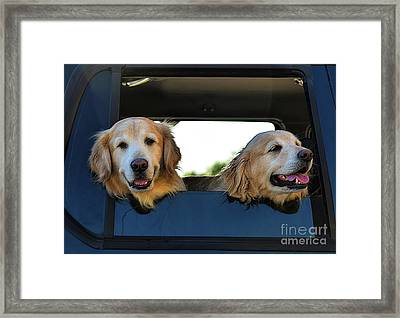 Smiling Dogs Framed Print