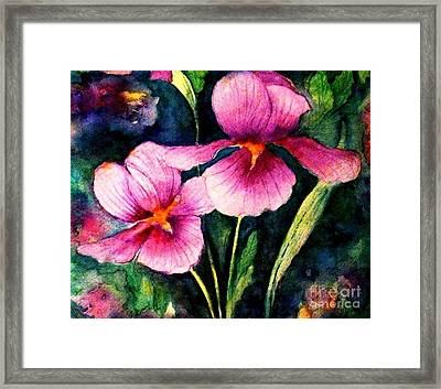 Smiling Iris Faces  Framed Print