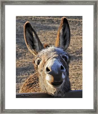 Smiling Jenny  Framed Print