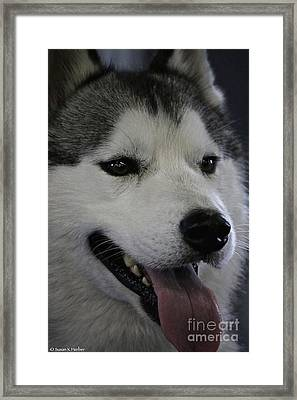 Smiling Framed Print by Susan Herber
