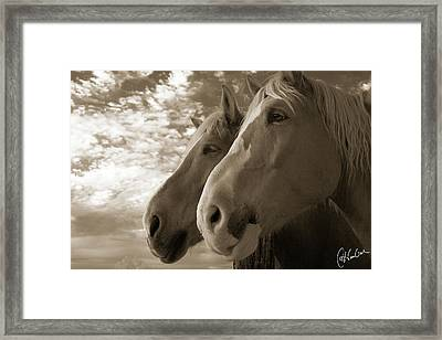 Smith And Wesson Framed Print by Christine Hauber
