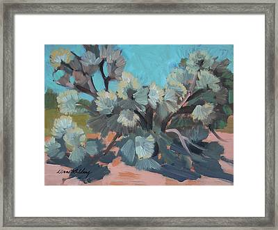 Smoke Tree At Santa Rosa Mountains Framed Print by Diane McClary