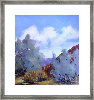 Smoke Trees In Bloom In Palm Desert Framed Print