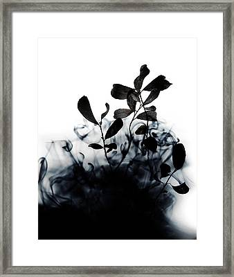 Smoke Without Fire II Framed Print