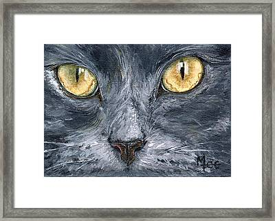 Smokey Framed Print by Mary-Lee Sanders