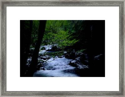 Smokey Mountain Creek Framed Print by Martin Morehead