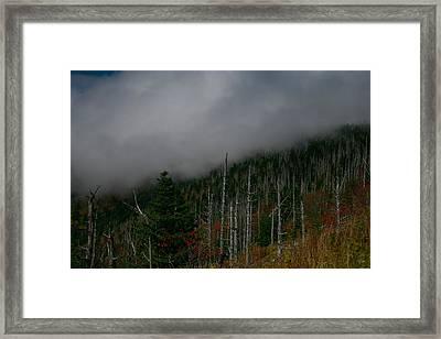Smokey Mountains Framed Print by James Jones