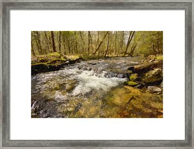 Smokey Mt. Stream Framed Print by Paul Bartoszek