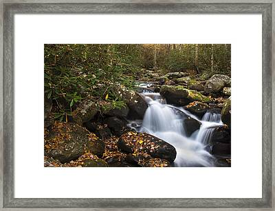 Smokies Stream In Autumn Framed Print by Andrew Soundarajan