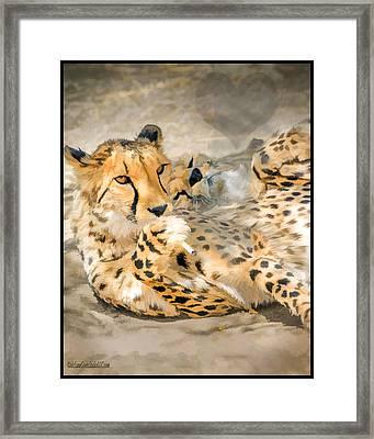 Smokin Cheetah Love Framed Print