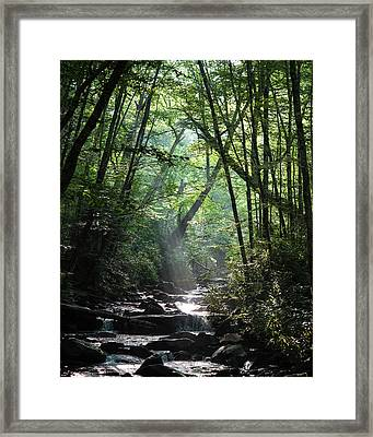 Smoky Framed Print