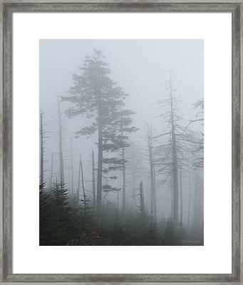 Smoky Haze Framed Print by Michael Fields