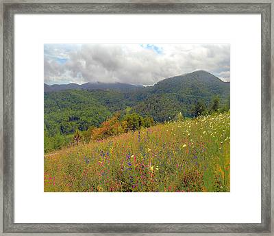 Framed Print featuring the photograph Smoky Mountains by Raymond Earley