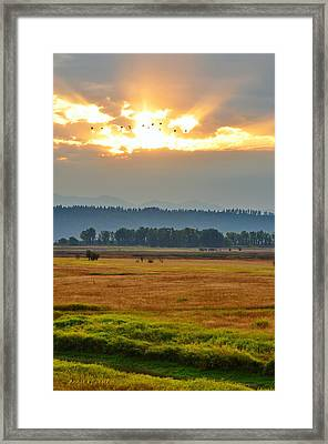 Smoky Sunrise Flight Framed Print by Annie Pflueger
