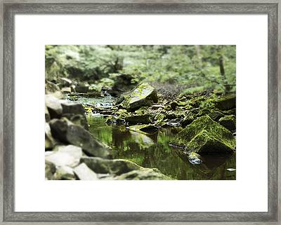 Smooth Framed Print by Svetlana Sewell