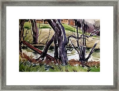 Snags And Driftwood Along The Banks Framed Print by Charlie Spear