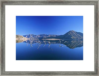Snags- Lake Isabella Framed Print by Soli Deo Gloria Wilderness And Wildlife Photography