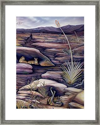 Snake Dance Framed Print by Sevan Thometz
