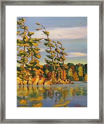 Snake Island In Fall Sunset Framed Print