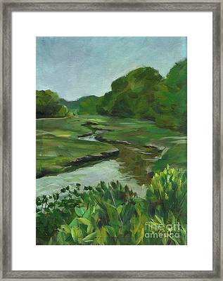 Snake Like Creek I Me Framed Print