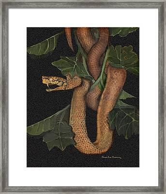 Snake Of No Kind Framed Print by Karen-Lee