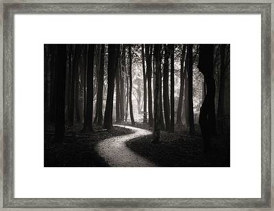Snake Path Framed Print by Janek Sedlar