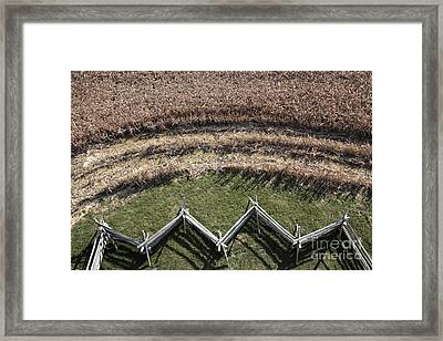Snake-rail Fence And Cornfield Framed Print